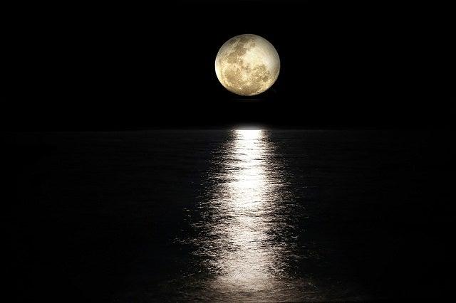 9月といえば、「中秋の名月」