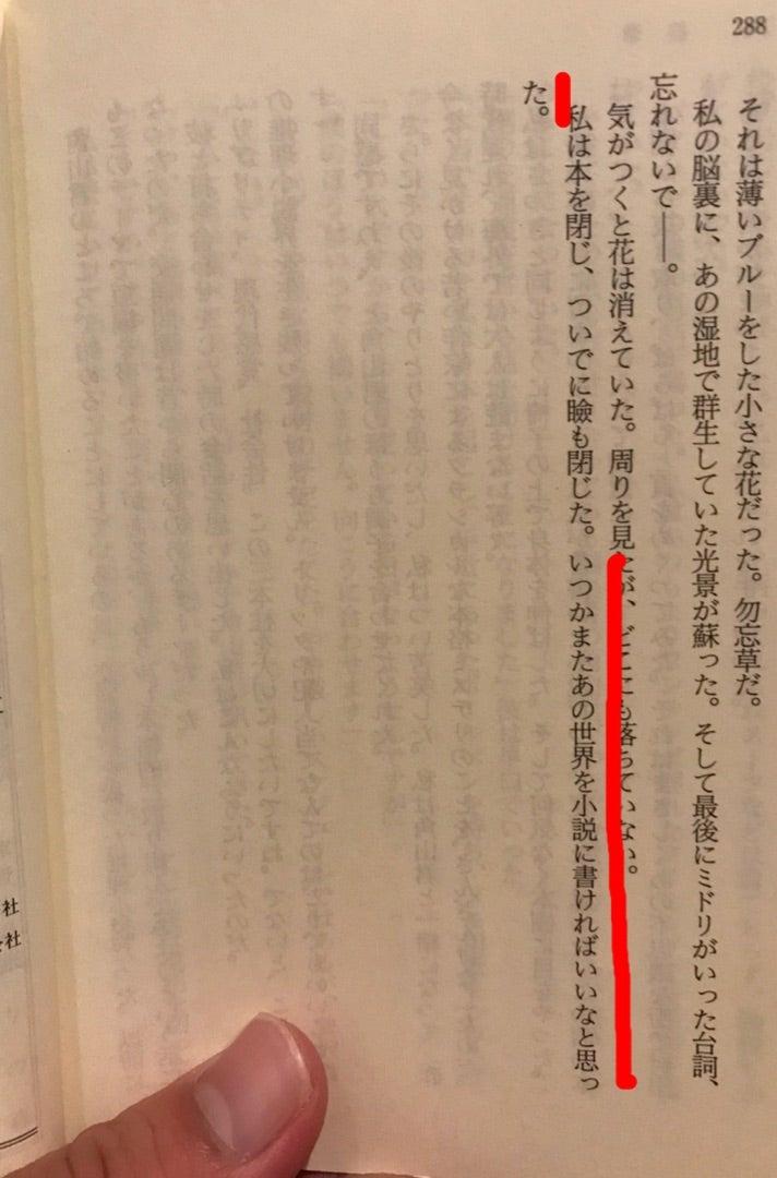 名探偵の呪縛(レビュー)   東...