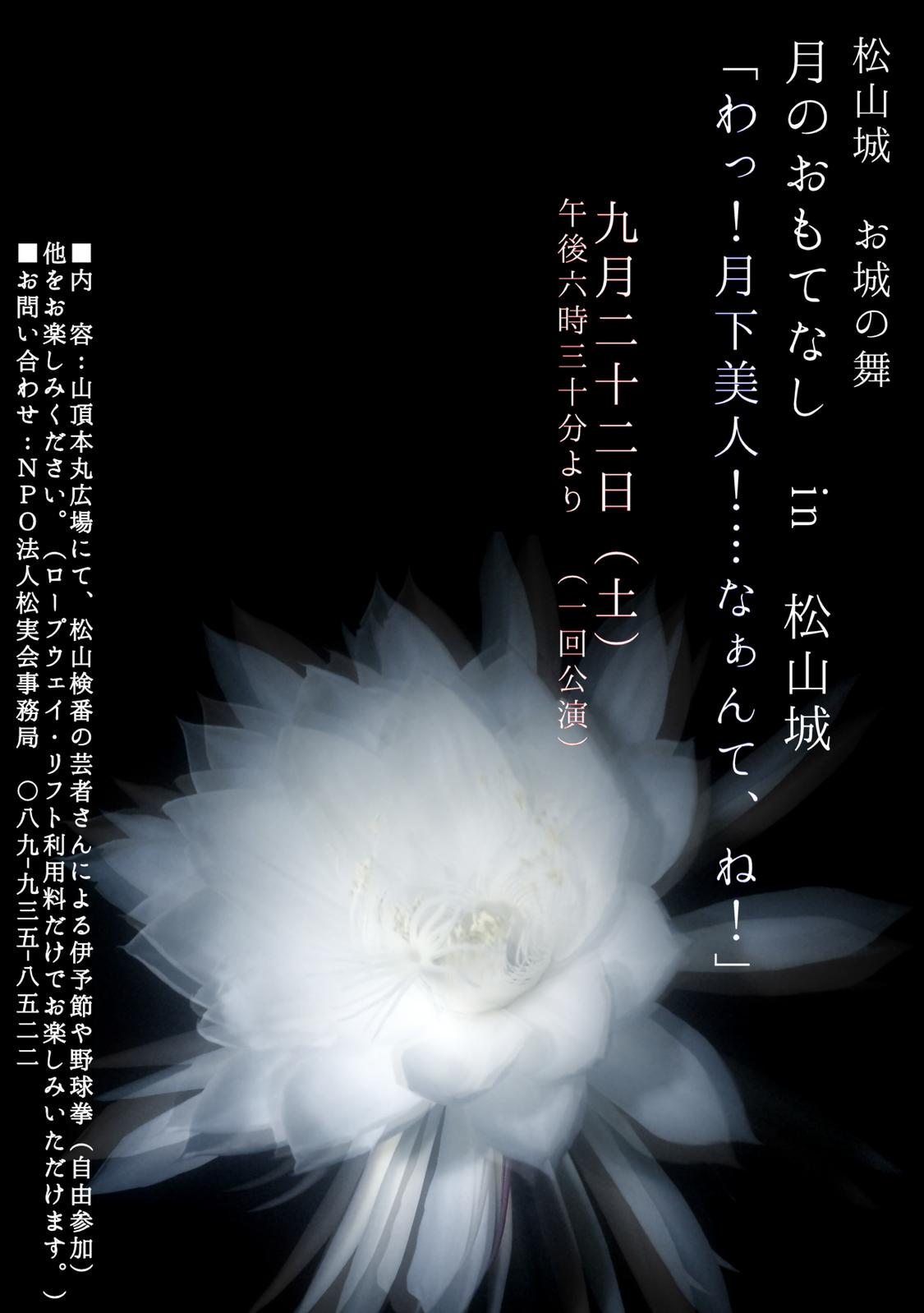 「今宵、『松山城』でお目に掛かります!」の記事より