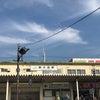 江戸川区すくすくスクールの研修をやらせていただきましたの画像