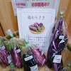 長野の野菜と本日のランチの画像