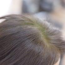 髪に対してのマイナスが無いハナヘナの記事に添付されている画像