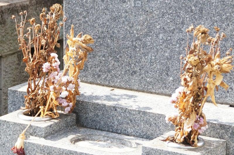 お供え花 枯れる 墓 供花 墓参り