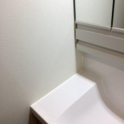 後悔ポイント⑩洗面台の記事に添付されている画像