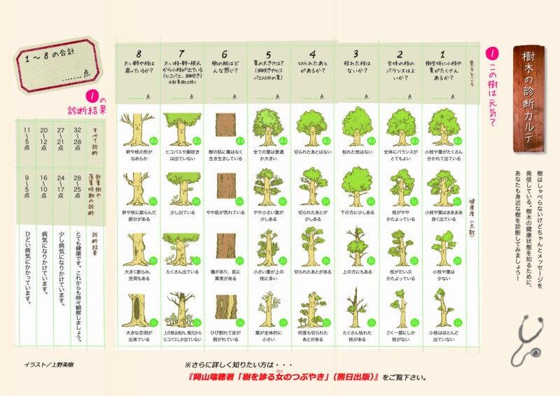 キッズ用樹木の診断カルテ1