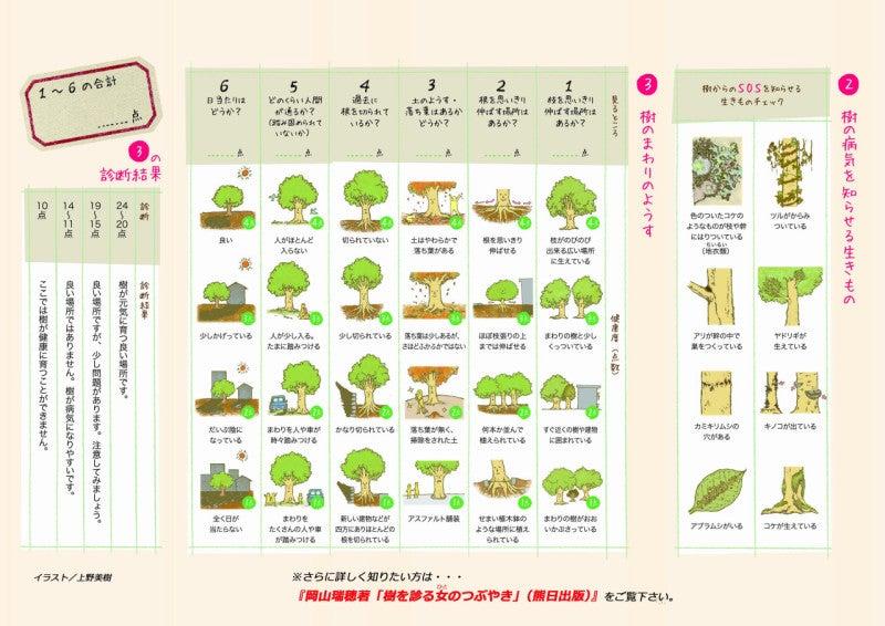 キッズ用樹木の診断カルテ2