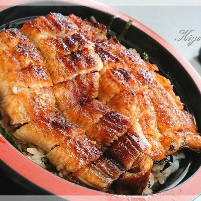 ウナギを食して元気に!◆KiyoのDiaryの記事に添付されている画像