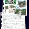 熊本の行ってみてほしい所!~阿蘇山~の画像