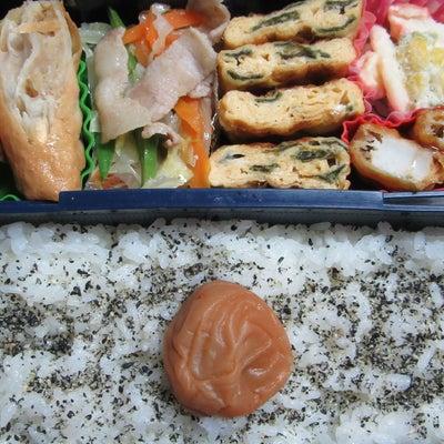 冷凍春巻き弁当☆の記事に添付されている画像