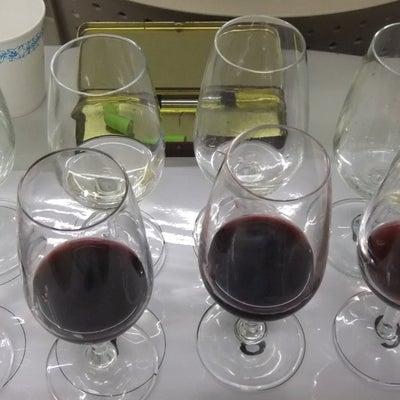 ワインエキスパート2次試験対策  初めてのワインスクール  本当に行って良かったの記事に添付されている画像