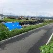 9月12日、吉野川の…