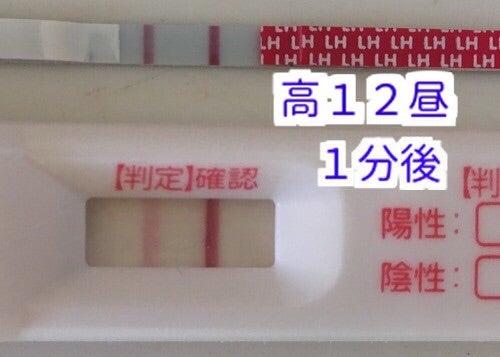 ラッキーテスト 高温期12日目