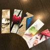 御守り⁈ 紹介カード? しおり⁉︎の画像