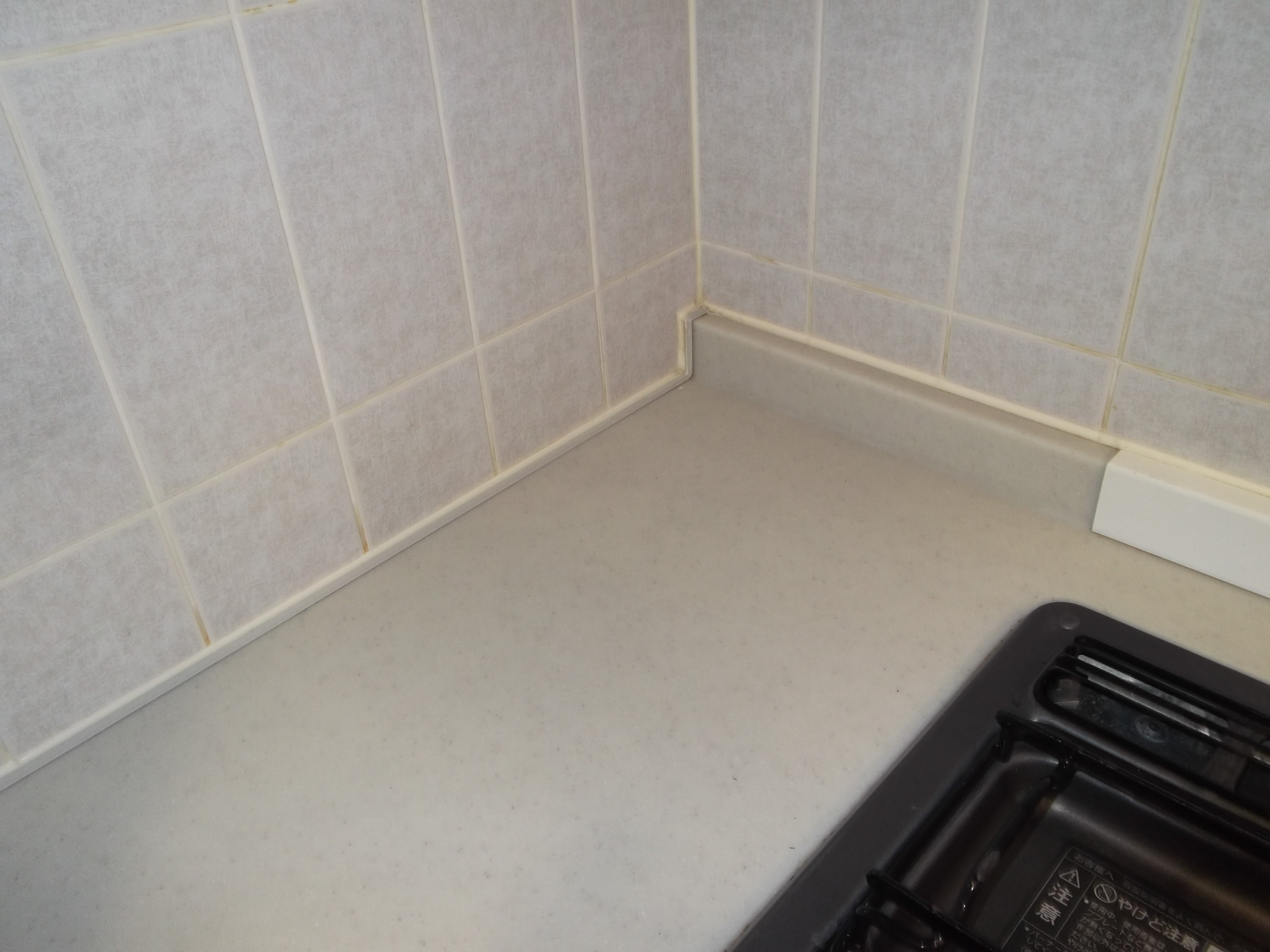 新宿の便利屋ダイコーレディのお掃除代行部隊なら家中きれいに掃除します。