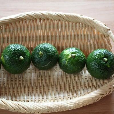 9月・10月のレッスン予定** 無農薬柚子で柚子胡椒作り**の記事に添付されている画像