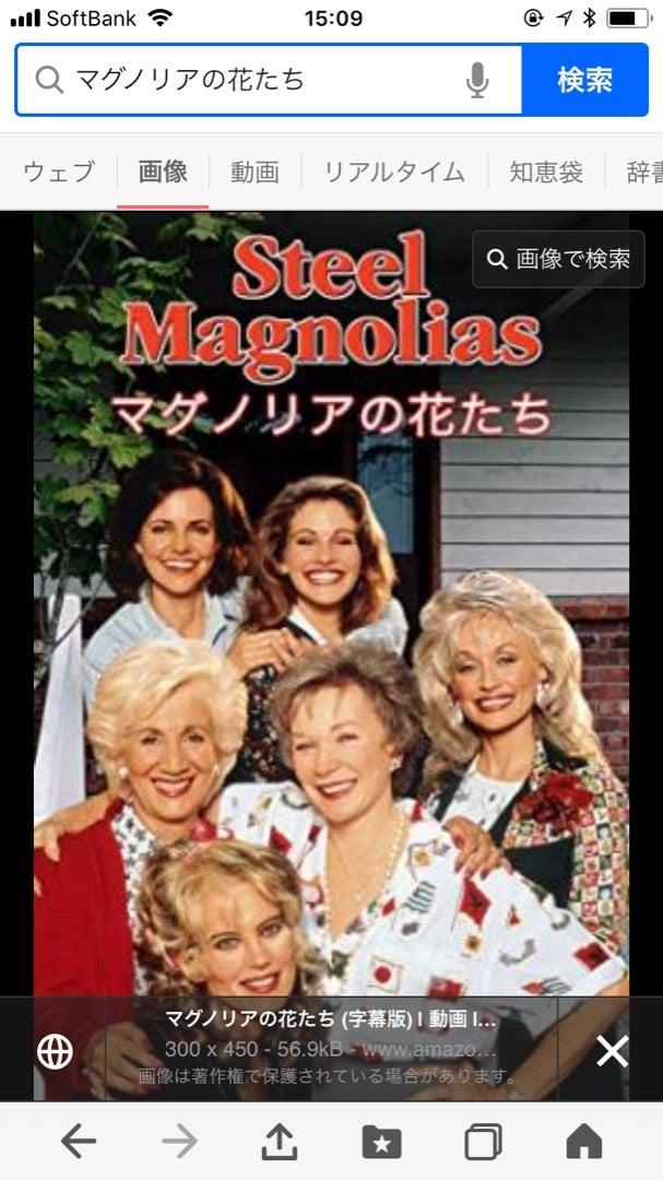 映画マグノリアの花たち | リカ...