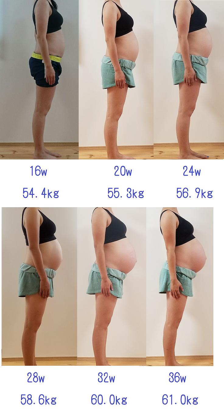 ヶ月 妊娠 お腹 四