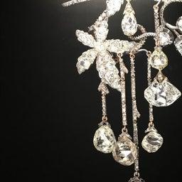 画像 【秋の夜長に♡】羽とキラキラ♡ダイヤモンドの魅惑 の記事より 11つ目