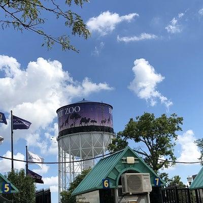 Detroit Zoo デトロイト・ズーが割と好きの記事に添付されている画像