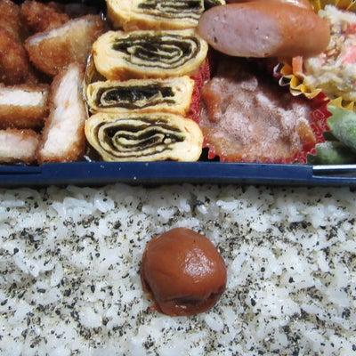 一口カツ弁当☆の記事に添付されている画像