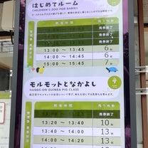 【1y1m2d】上野動物園訪問記~はじめてルーム~の記事に添付されている画像