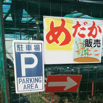 栗原養魚場さん【日め研】の記事に添付されている画像