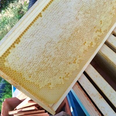 いざ蜂の巣箱に中板をいれて用意!の記事に添付されている画像