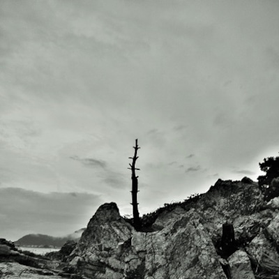 江の浦地磯からの風景の記事に添付されている画像
