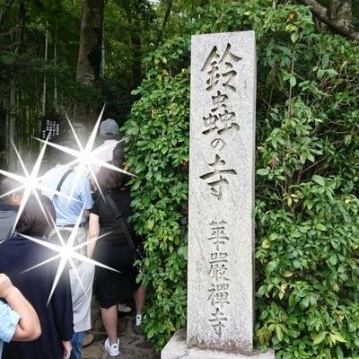 願いが叶う☆鈴虫寺☆の記事に添付されている画像