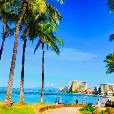 Hawaii Life ❊の記事に添付されている画像
