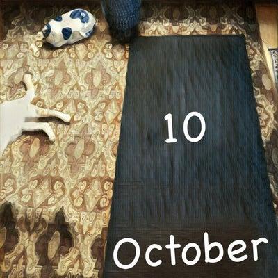 10月のスケジュール(追加・大阪狭山市コミュニティーセンターと瞑想ヨーガ)の記事に添付されている画像