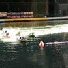 はじめての競艇イベントの画像