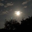 中秋の名月の記事より