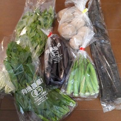 おまかせ野菜セット♪の記事に添付されている画像