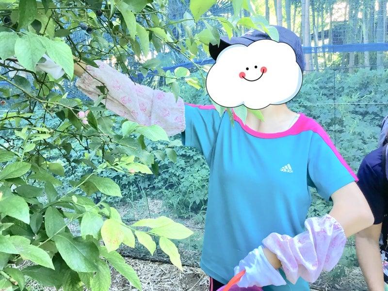 o0960072014272590514 - ◇8月22日(水)◇toiro青葉台