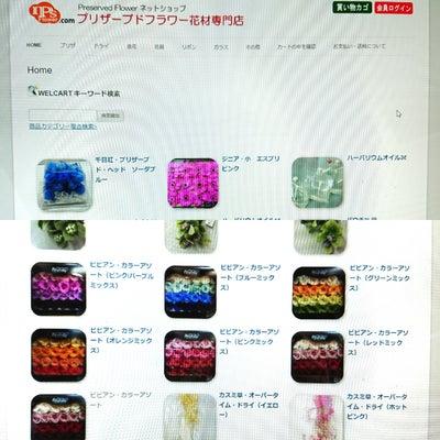 ハーバリウム花材仕入れネットショップの記事に添付されている画像