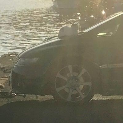庄内エギング&赤川河口シーバス釣り!の記事に添付されている画像