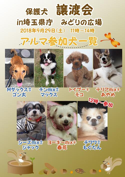保護 犬 譲渡 会 埼玉 犬・猫の譲渡 - 埼玉県