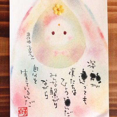 つぼみちゃんのはがきの記事に添付されている画像