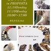【 &R リボン会 in PRPOSTA 11/18.19 】の画像