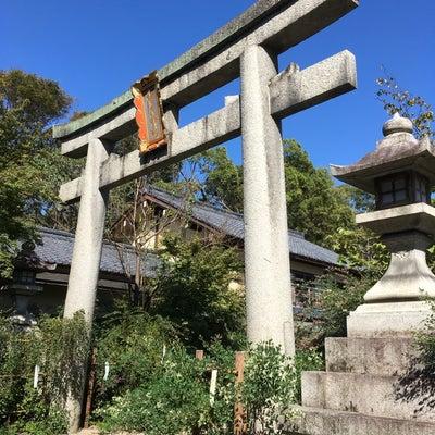 梨木神社の萩の記事に添付されている画像
