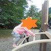 ことぶき公園♪の画像