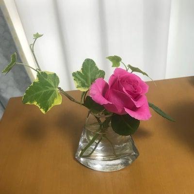 Autumn pink ~秋色ピンクの記事に添付されている画像
