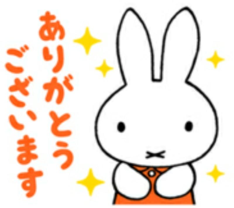 Miffyちゃん ありがとうございます