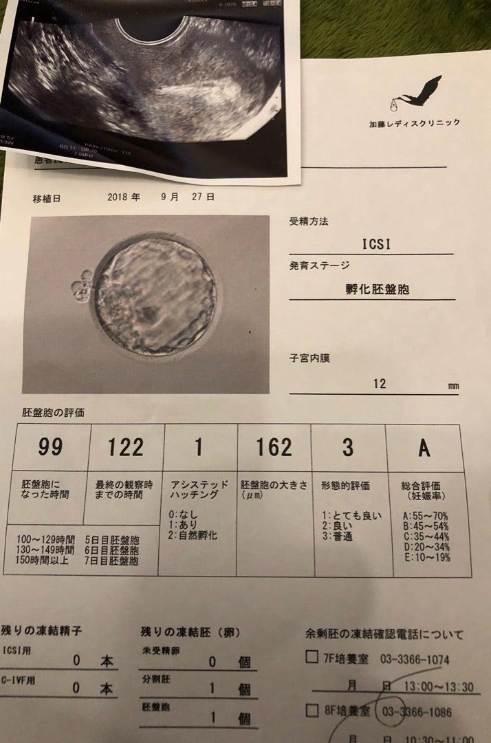 胚 盤 胞 移植 ブログ