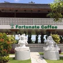 ヴィーガン料理のレストランFortunate Coffee