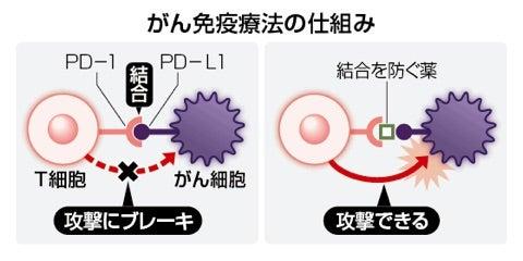 100mg28万円 夢のがん治療薬 ノーベル賞 本庶佑氏が受賞 オブジーボの ...