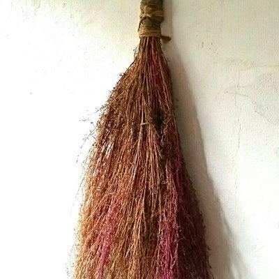 コキア(ほうき草)でミニほうきを作ってみました。の記事に添付されている画像