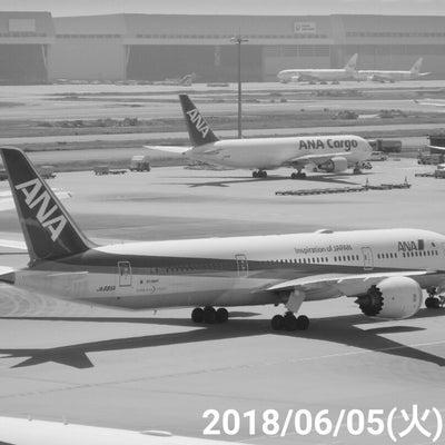 『18/06/05⑤羽田空港国際線ターミナル』の記事に添付されている画像