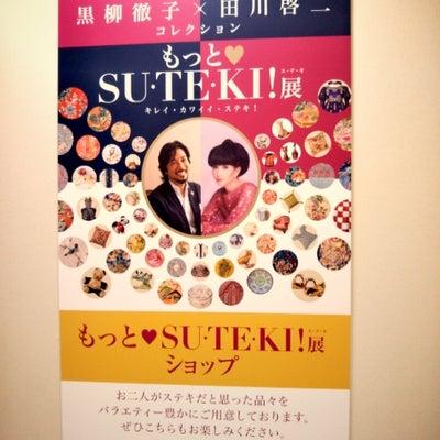 念願のSUTEKI展ヘの記事に添付されている画像